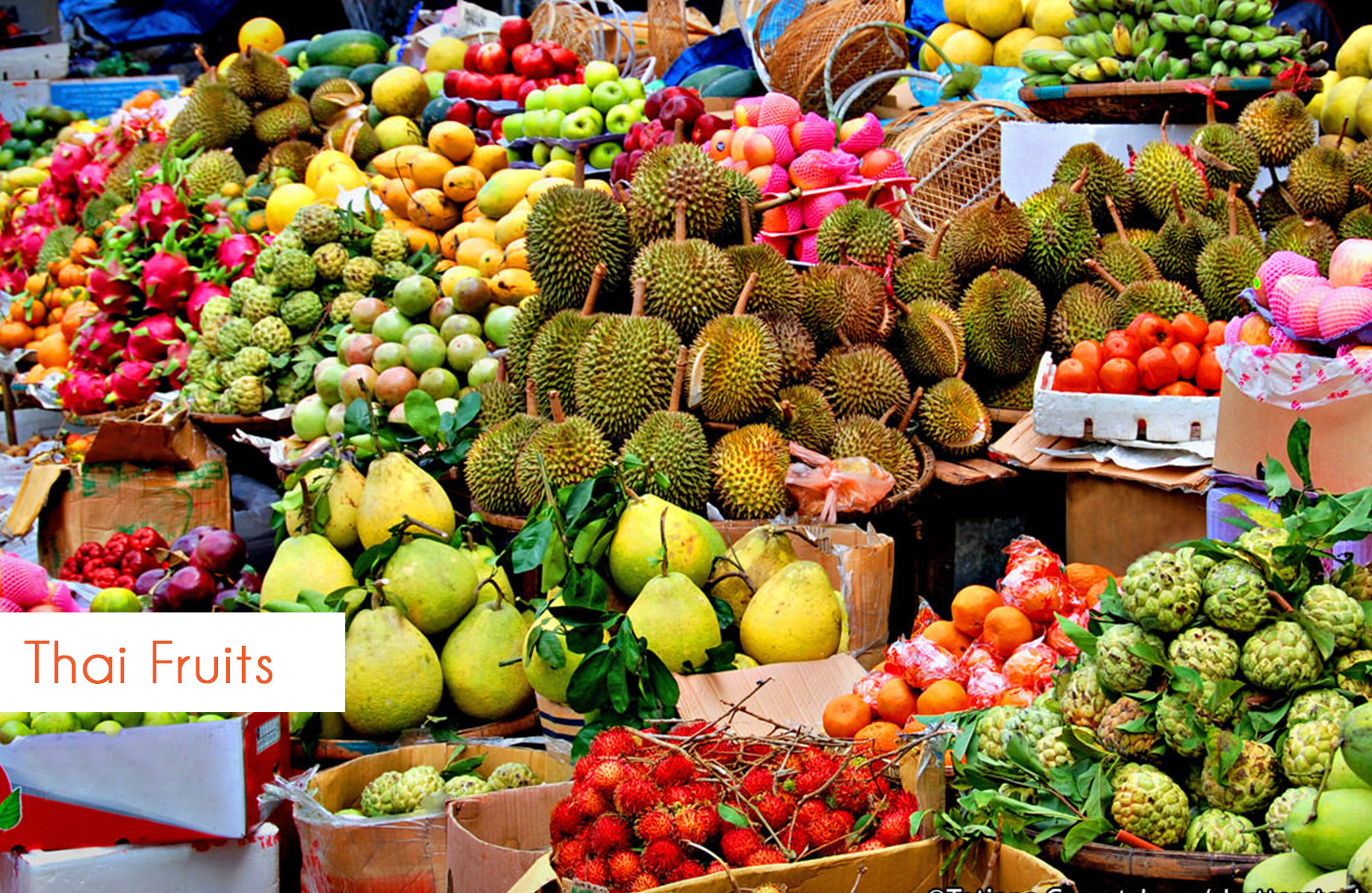 thai_fruits_blog